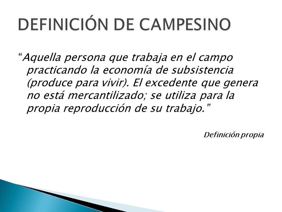 DEFINICIÓN DE CAMPESINO