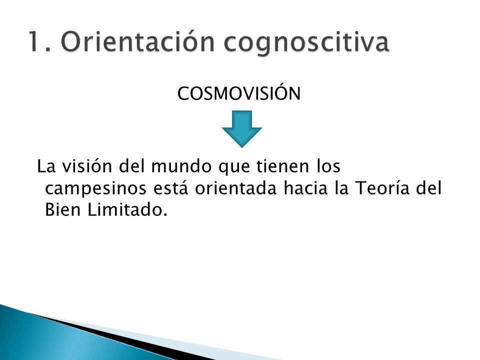 1. Orientación cognoscitiva