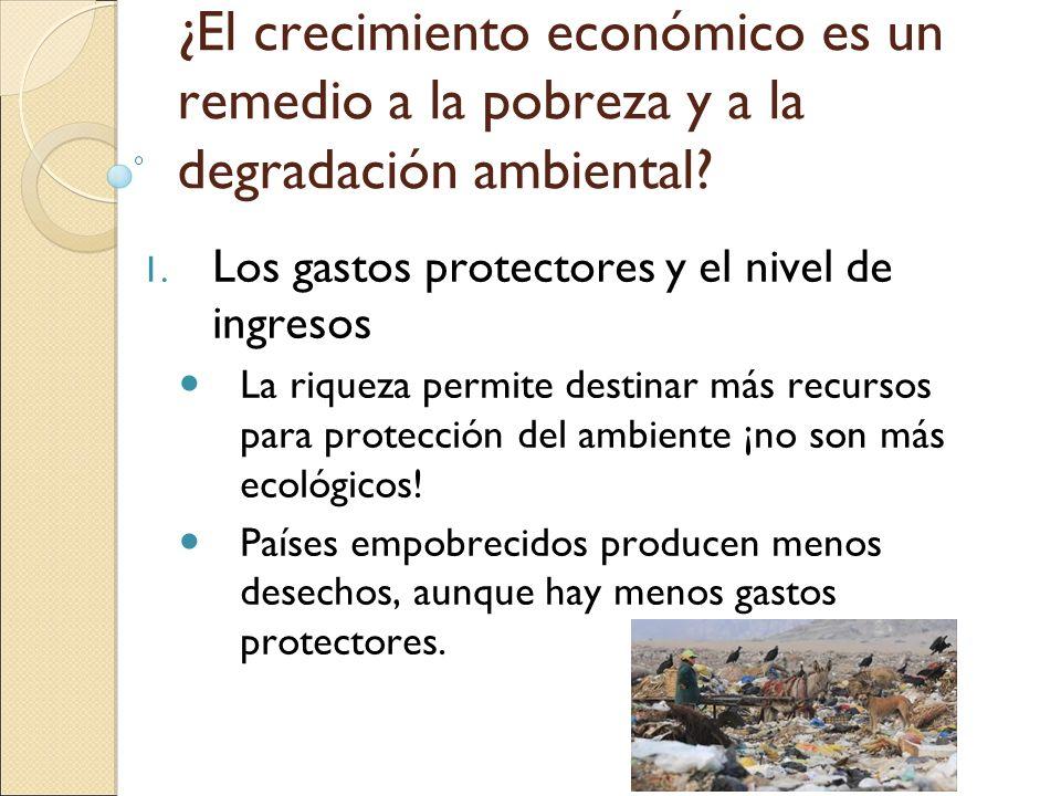 ¿El crecimiento económico es un remedio a la pobreza y a la degradación ambiental