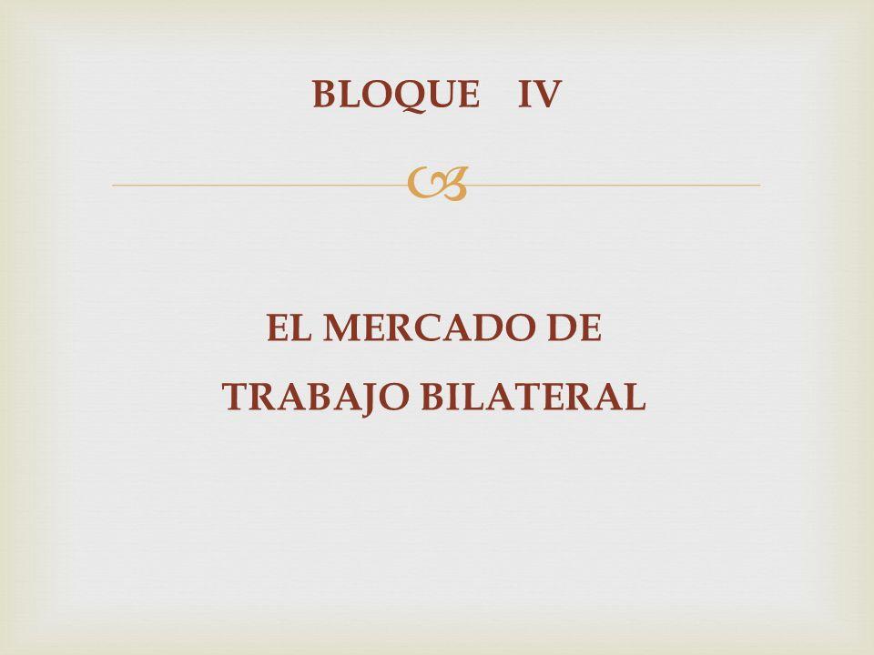 BLOQUE IV EL MERCADO DE TRABAJO BILATERAL