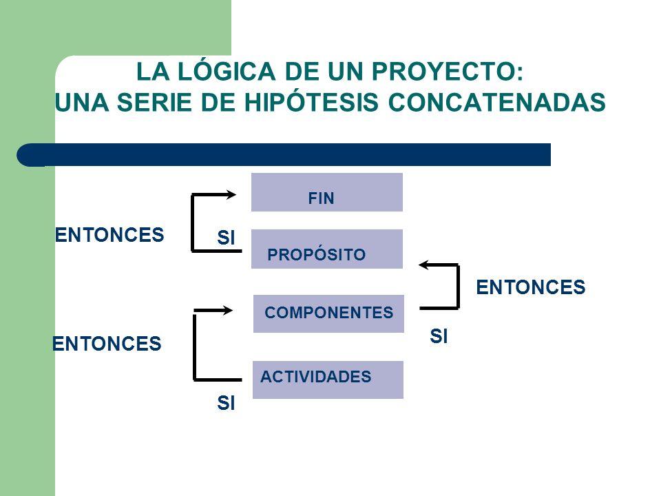 LA LÓGICA DE UN PROYECTO: UNA SERIE DE HIPÓTESIS CONCATENADAS