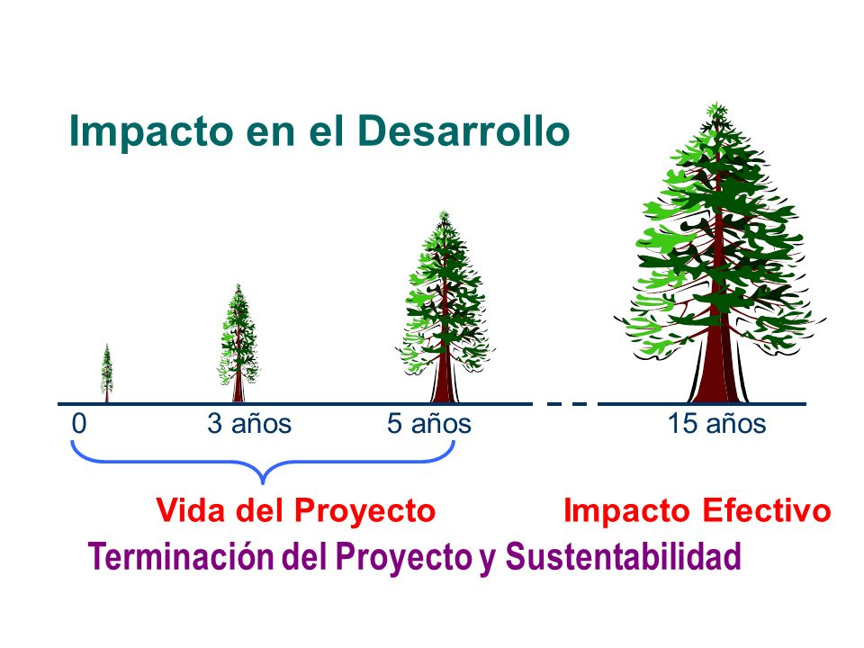Impacto en el Desarrollo