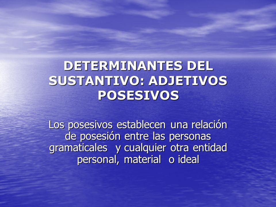 DETERMINANTES DEL SUSTANTIVO: ADJETIVOS POSESIVOS