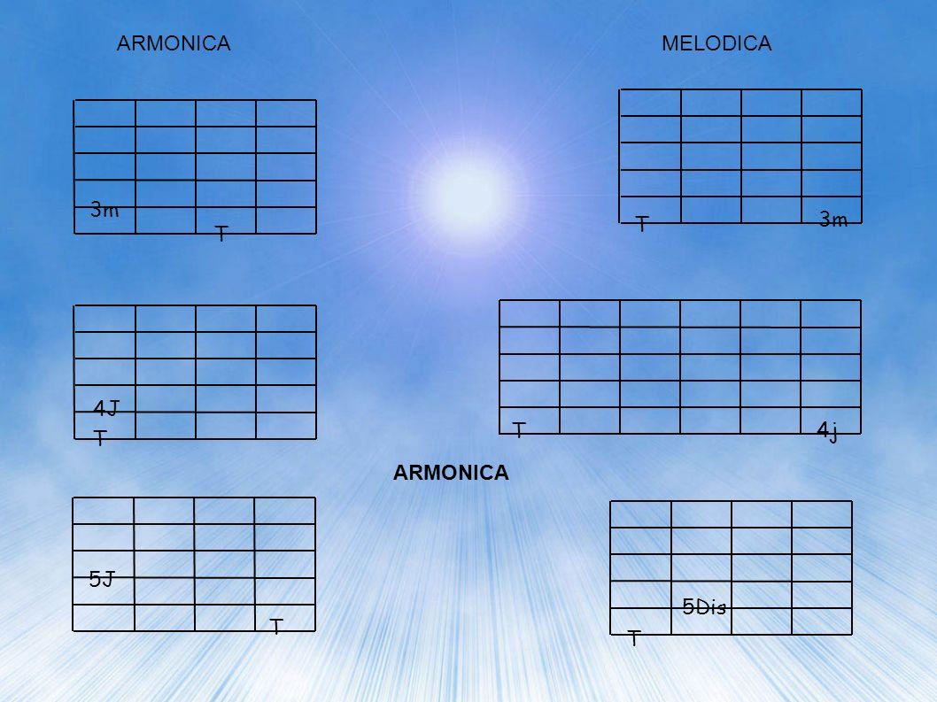ARMONICA MELODICA 3m. T. 3m.