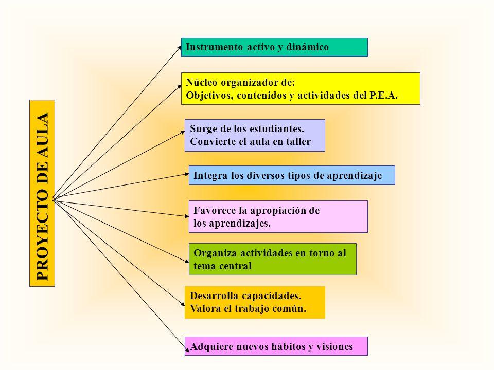 PROYECTO DE AULA Instrumento activo y dinámico Núcleo organizador de: