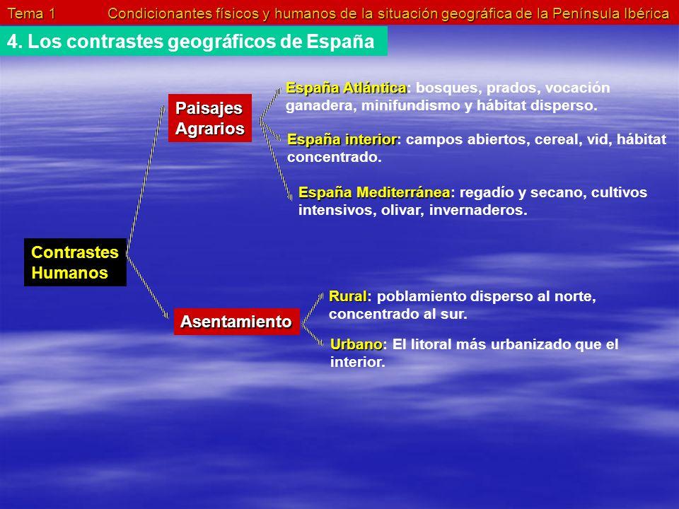 4. Los contrastes geográficos de España