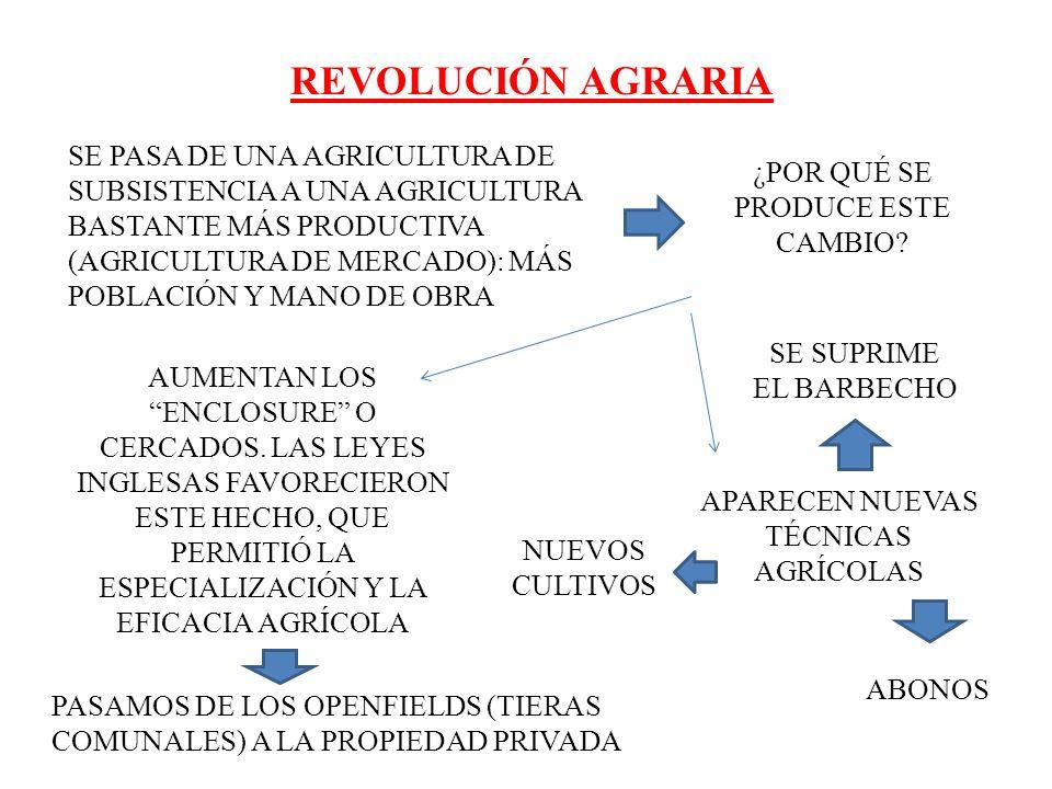 REVOLUCIÓN AGRARIA