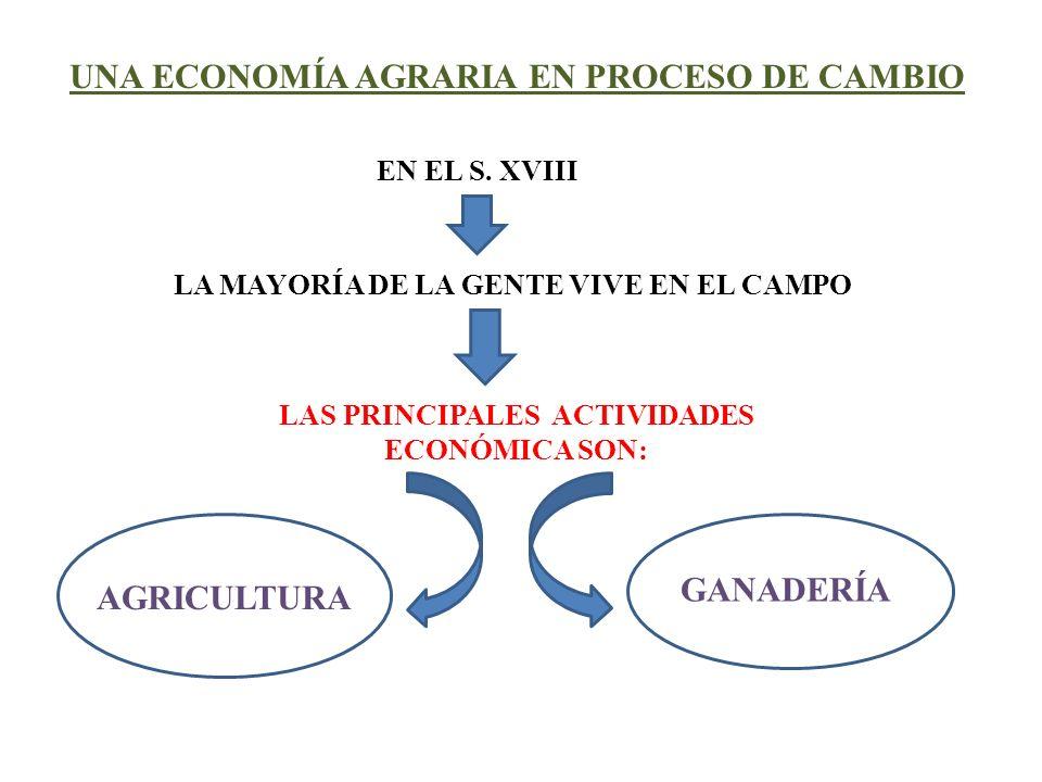 UNA ECONOMÍA AGRARIA EN PROCESO DE CAMBIO LAS PRINCIPALES ACTIVIDADES