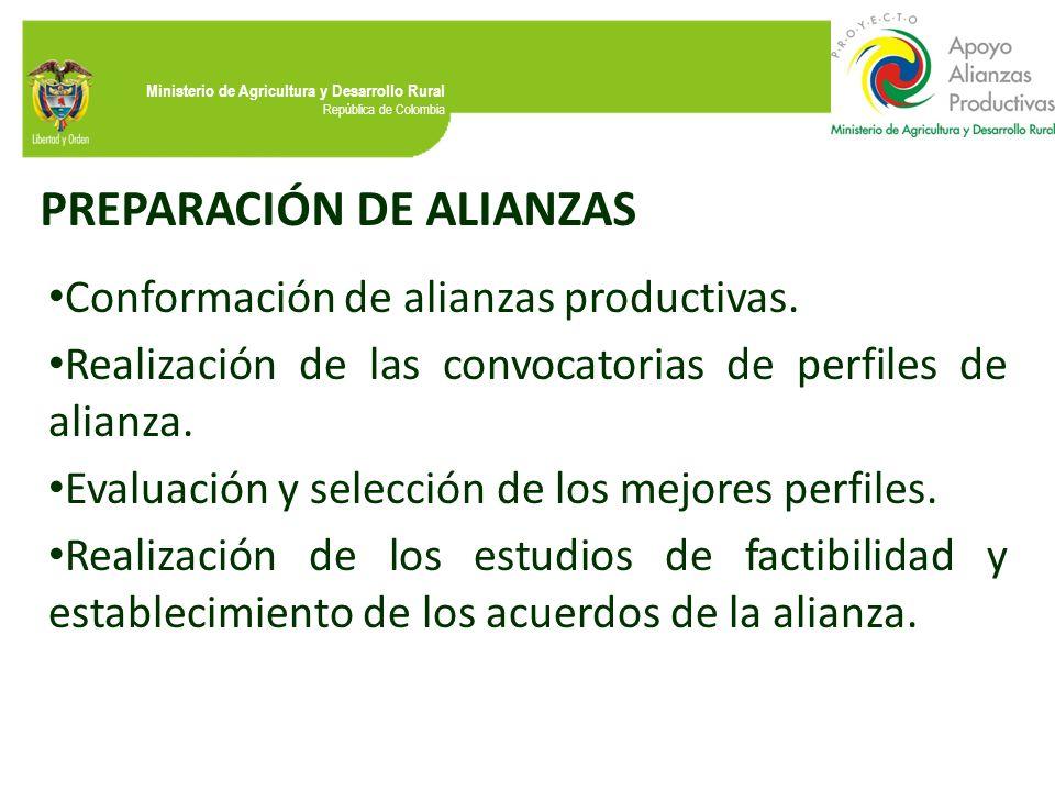 PREPARACIÓN DE ALIANZAS