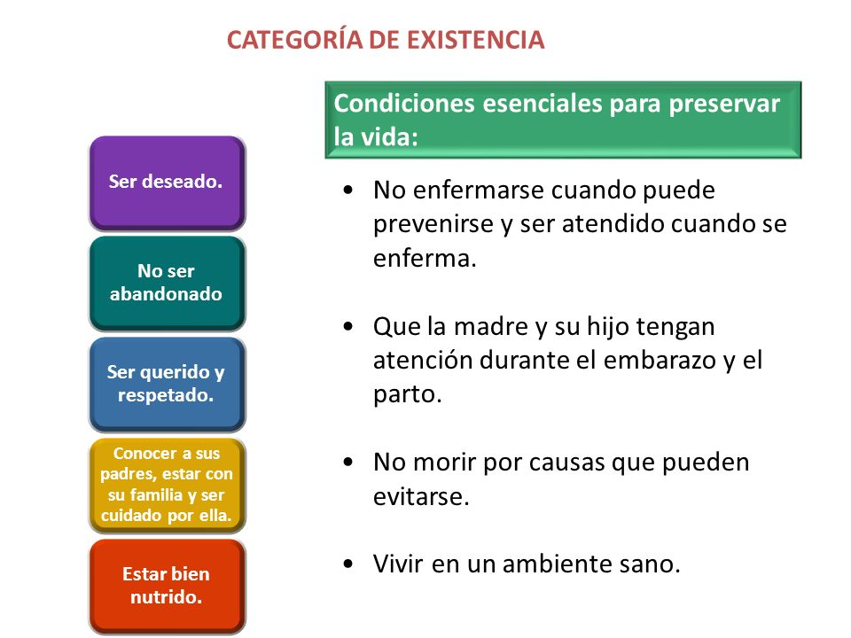 CATEGORÍA DE EXISTENCIA