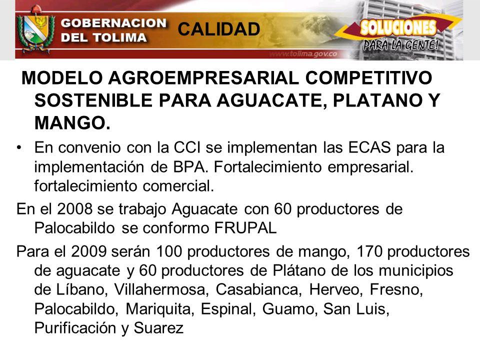 CALIDAD MODELO AGROEMPRESARIAL COMPETITIVO SOSTENIBLE PARA AGUACATE, PLATANO Y MANGO.