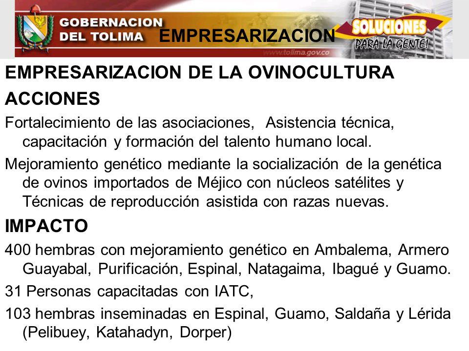 EMPRESARIZACION DE LA OVINOCULTURA ACCIONES