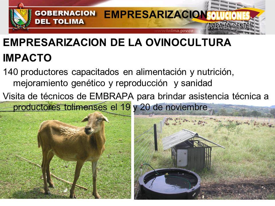 EMPRESARIZACION DE LA OVINOCULTURA IMPACTO