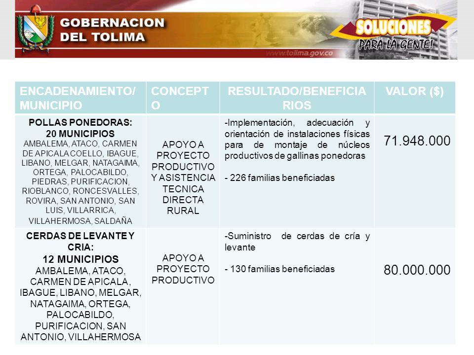 RESULTADO/BENEFICIARIOS CERDAS DE LEVANTE Y CRIA: