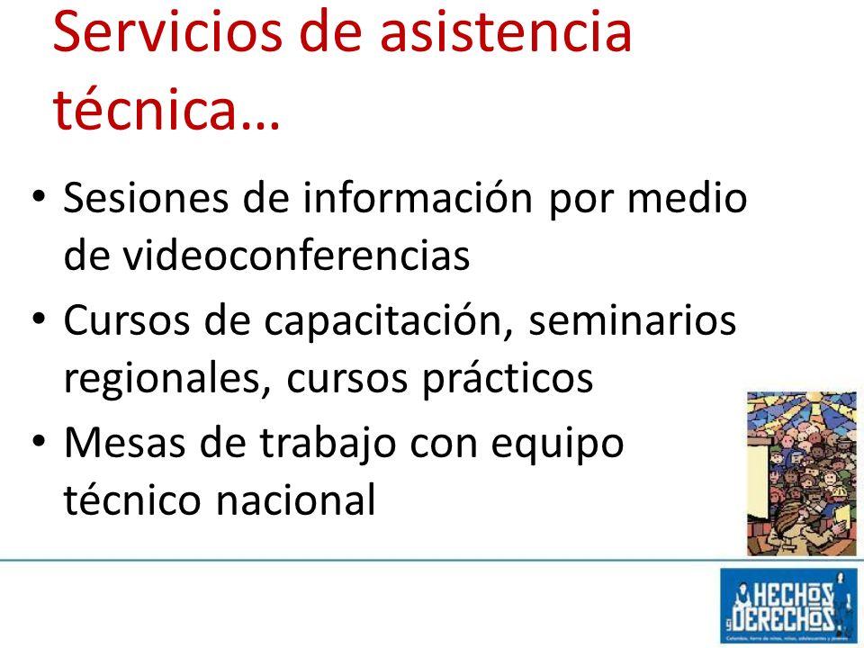 Servicios de asistencia técnica…