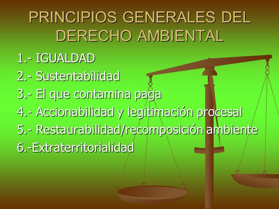 PRINCIPIOS GENERALES DEL DERECHO AMBIENTAL