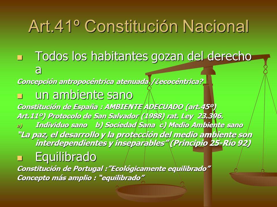 Art.41º Constitución Nacional