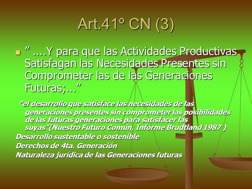 Art.41º CN (3)