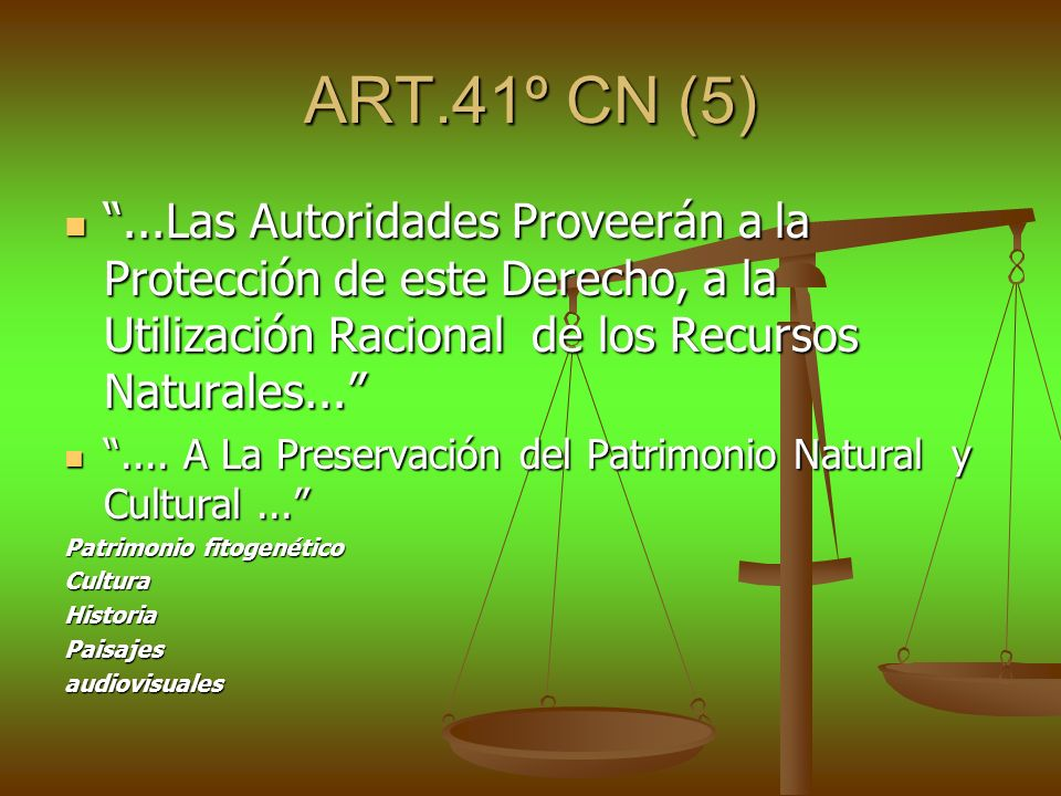 ART.41º CN (5) ...Las Autoridades Proveerán a la Protección de este Derecho, a la Utilización Racional de los Recursos Naturales...