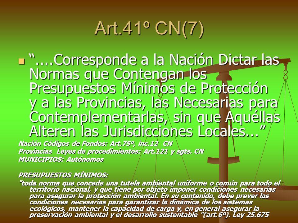 Art.41º CN(7)