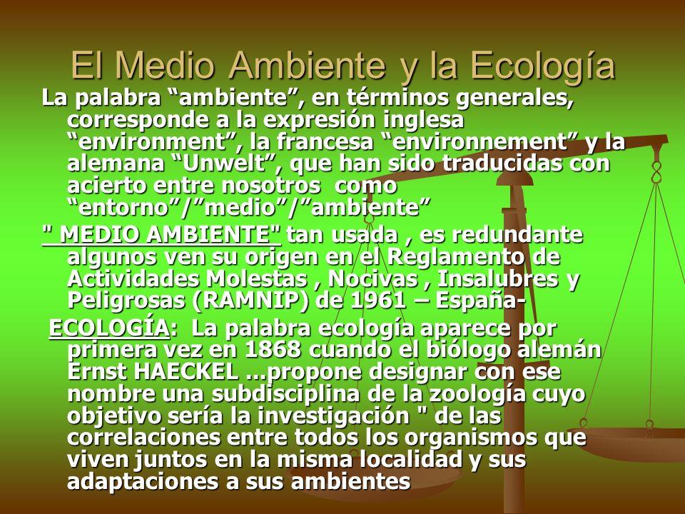 El Medio Ambiente y la Ecología