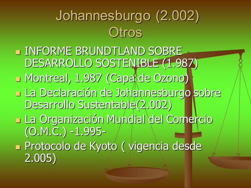 Johannesburgo (2.002) Otros