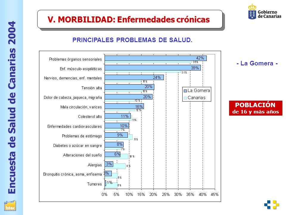 V. MORBILIDAD: Enfermedades crónicas PRINCIPALES PROBLEMAS DE SALUD.