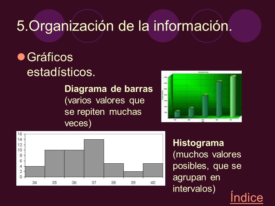 5.Organización de la información.
