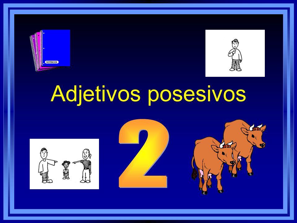 Adjetivos posesivos 2