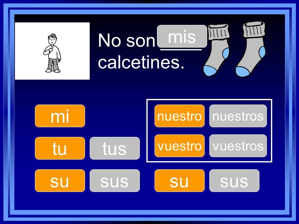 mis No son ____ calcetines. mi tu tus su sus su sus nuestro nuestros