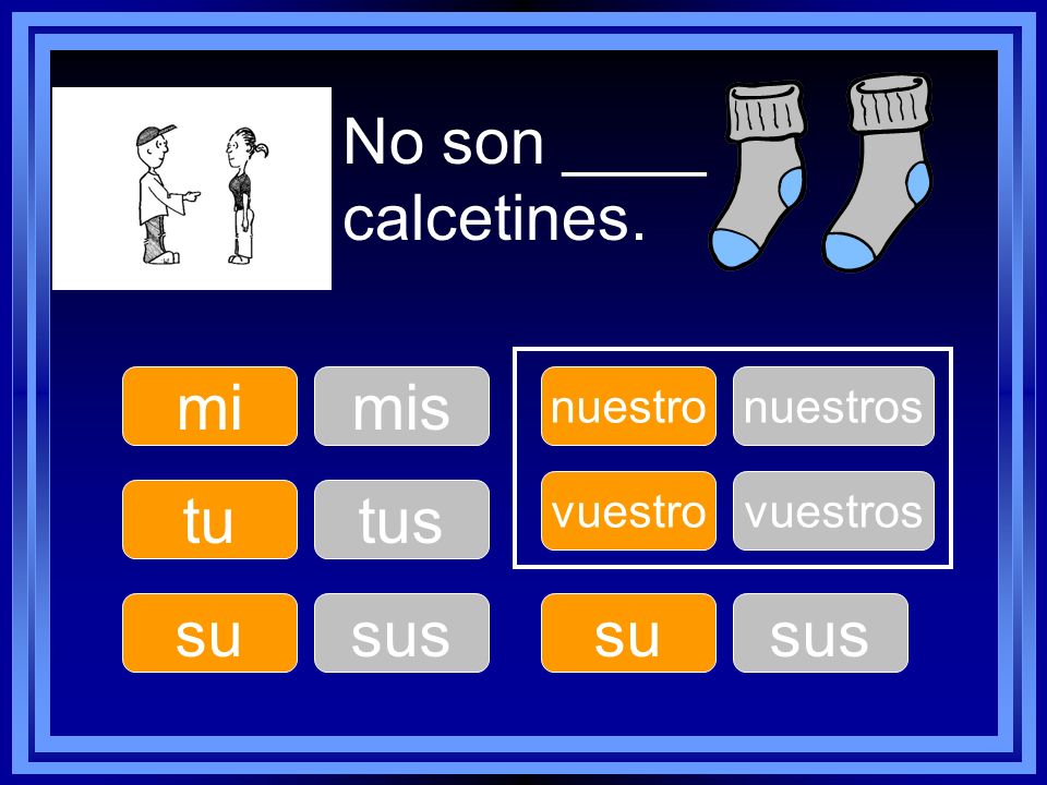No son ____ calcetines. mi mis tu tus su sus su sus nuestro nuestros