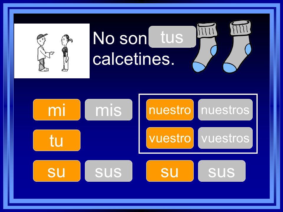 No son ____ calcetines. tus mi mis tu su sus su sus nuestro nuestros