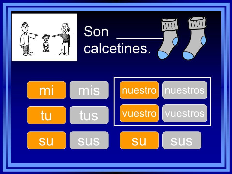 Son ______ calcetines. mi mis tu tus su sus su sus nuestro nuestros