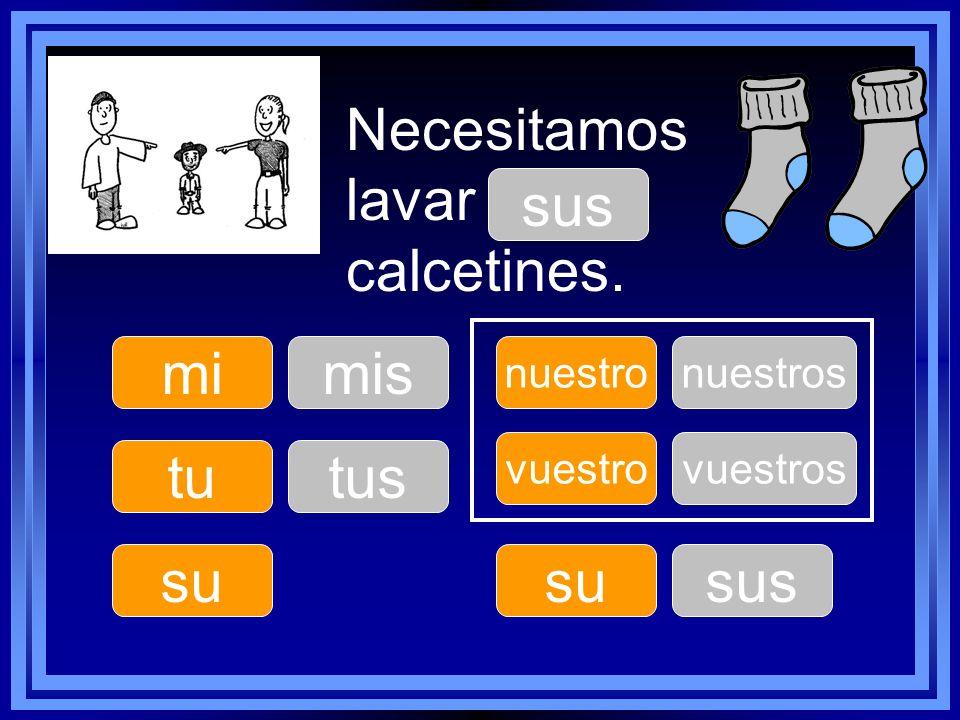 Necesitamos lavar ____ calcetines. sus