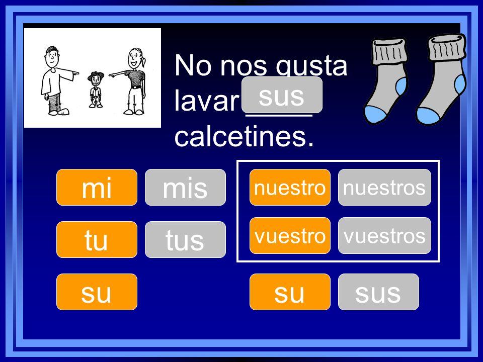 No nos gusta lavar ____ calcetines. sus