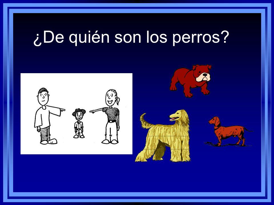 ¿De quién son los perros