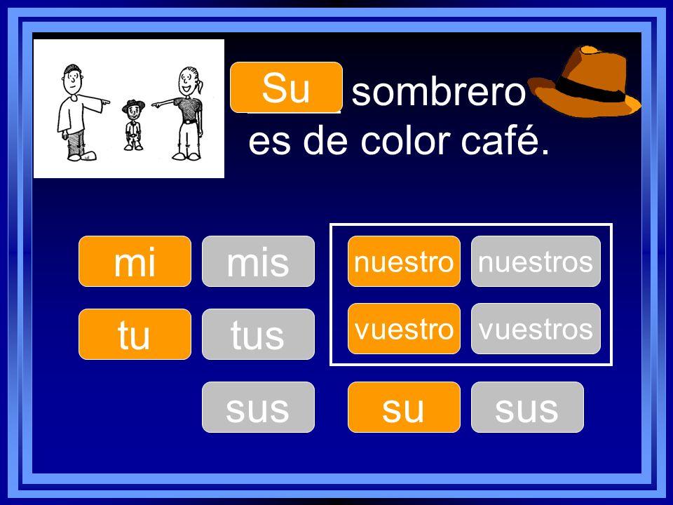 ____ sombrero es de color café.