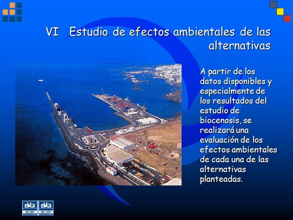 VI Estudio de efectos ambientales de las alternativas