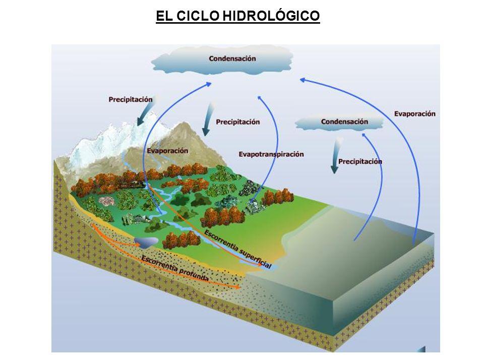 EL CICLO HIDROLÓGICO