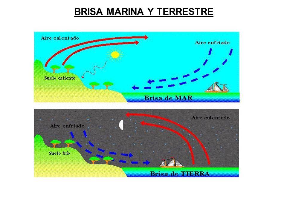 BRISA MARINA Y TERRESTRE