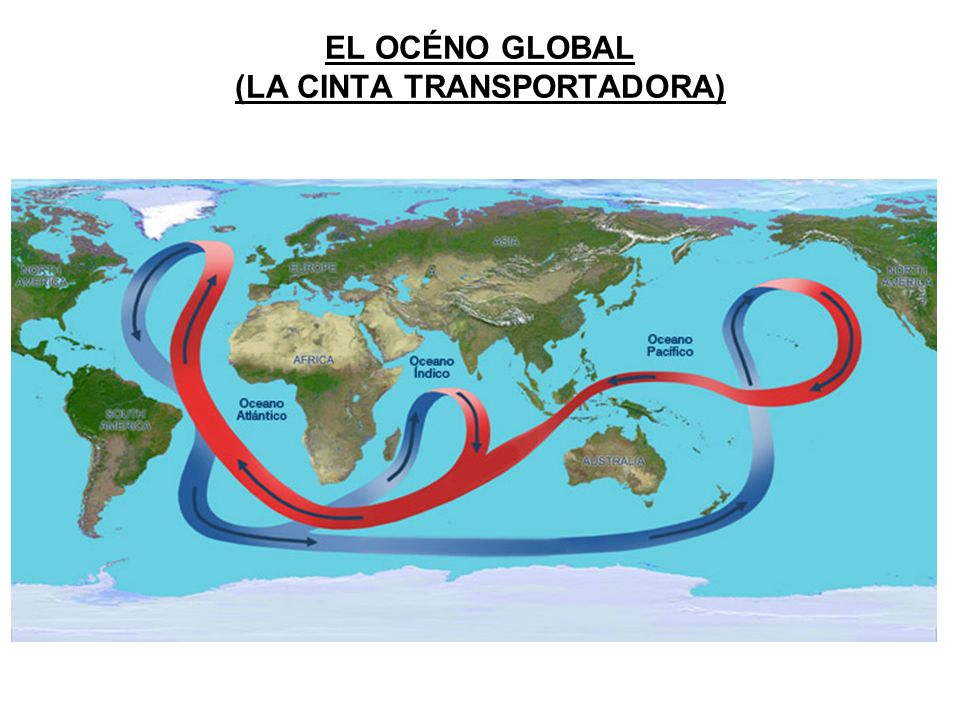 EL OCÉNO GLOBAL (LA CINTA TRANSPORTADORA)