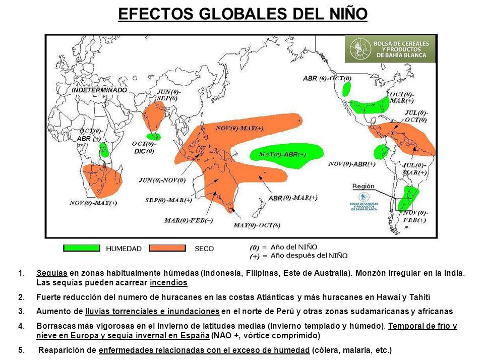 EFECTOS GLOBALES DEL NIÑO