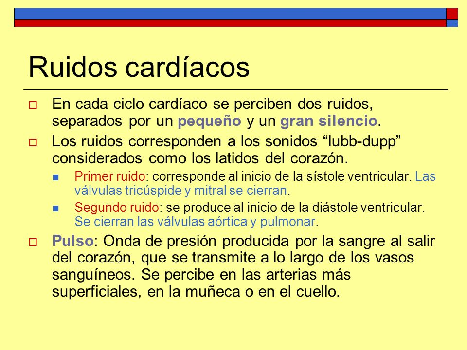 Ruidos cardíacosEn cada ciclo cardíaco se perciben dos ruidos, separados por un pequeño y un gran silencio.