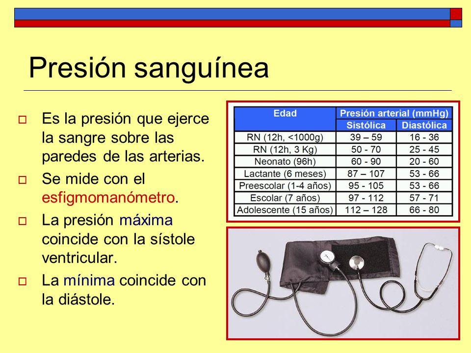 Presión sanguínea Es la presión que ejerce la sangre sobre las paredes de las arterias. Se mide con el esfigmomanómetro.
