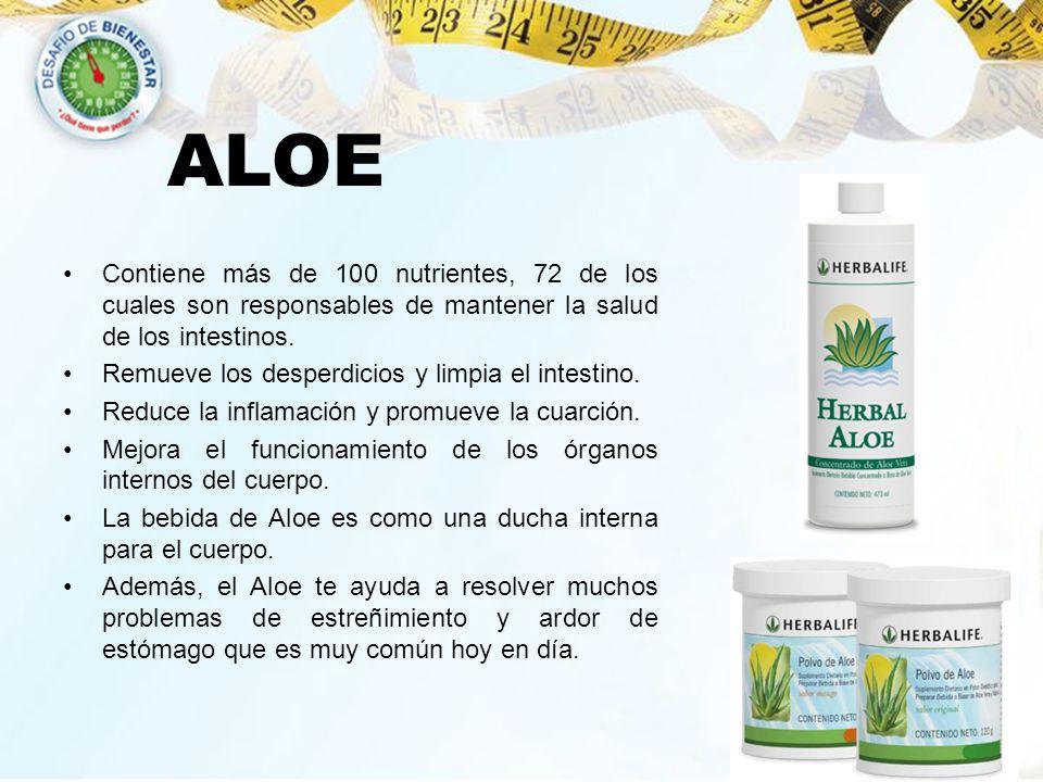 ALOE Contiene más de 100 nutrientes, 72 de los cuales son responsables de mantener la salud de los intestinos.
