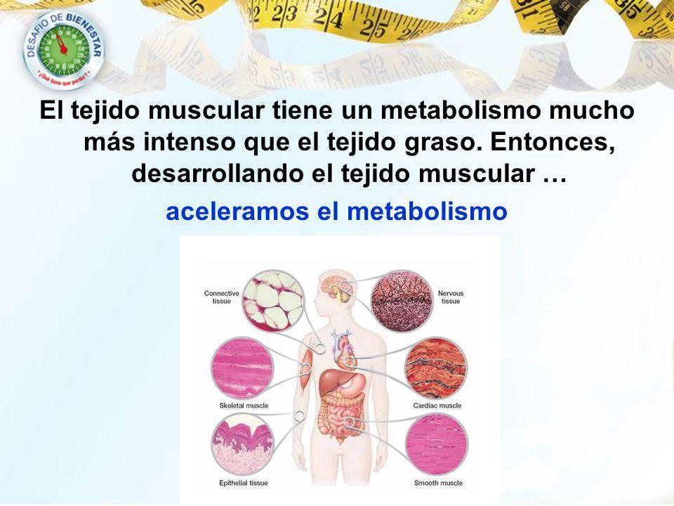 aceleramos el metabolismo