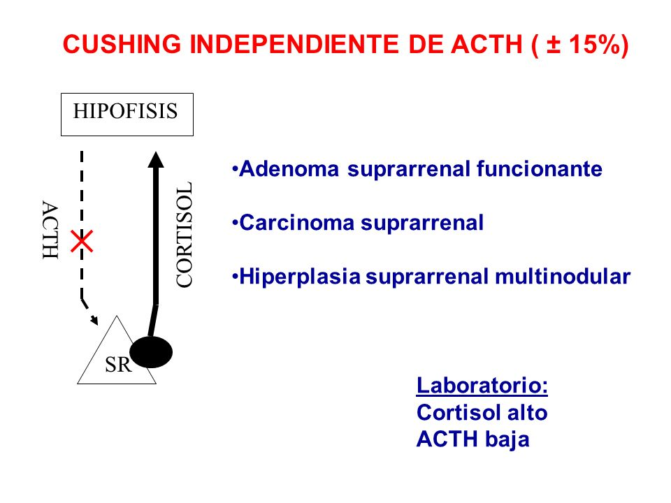 CUSHING INDEPENDIENTE DE ACTH ( ± 15%)