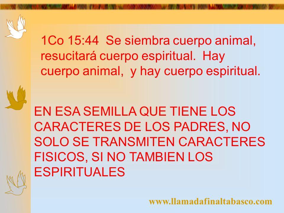 1Co 15:44 Se siembra cuerpo animal, resucitará cuerpo espiritual