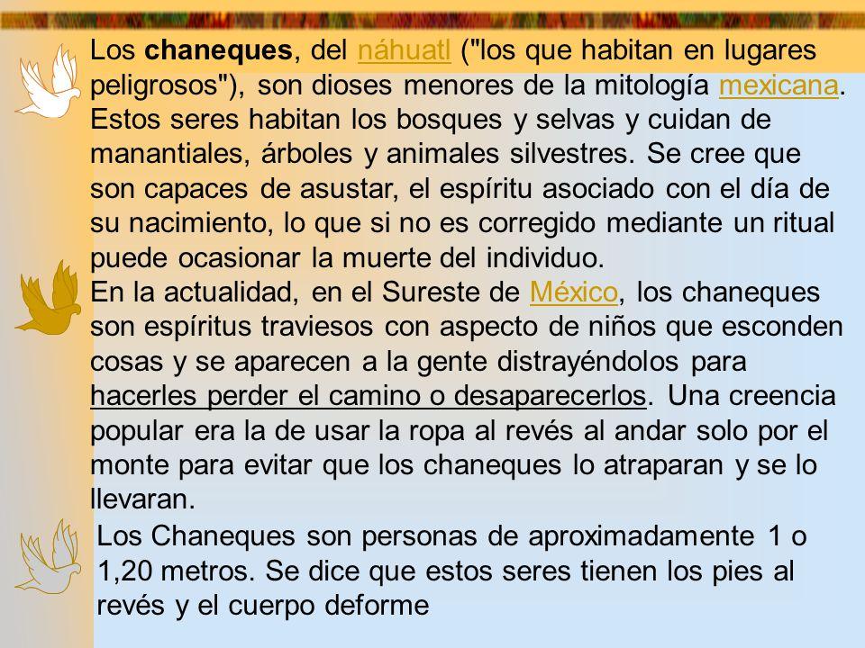 Los chaneques, del náhuatl ( los que habitan en lugares peligrosos ), son dioses menores de la mitología mexicana. Estos seres habitan los bosques y selvas y cuidan de manantiales, árboles y animales silvestres. Se cree que son capaces de asustar, el espíritu asociado con el día de su nacimiento, lo que si no es corregido mediante un ritual puede ocasionar la muerte del individuo.