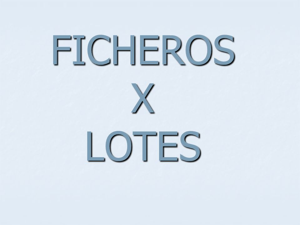 FICHEROS X LOTES